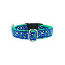 Molecular Essential Dog Collar