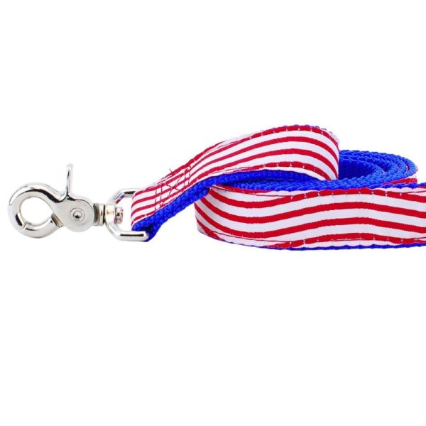 """1"""" Stars and Stripes 5ft Essential Dog Leash"""