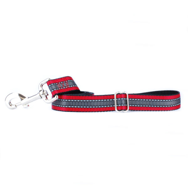 red and grey reflective dog lead