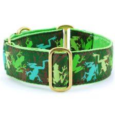 Coqui Jungle - Exclusive Dog Collar