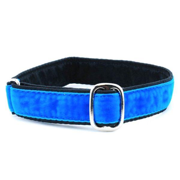 blue velvet dog collar
