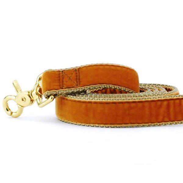 Antique Gold Velvet Dog Leash