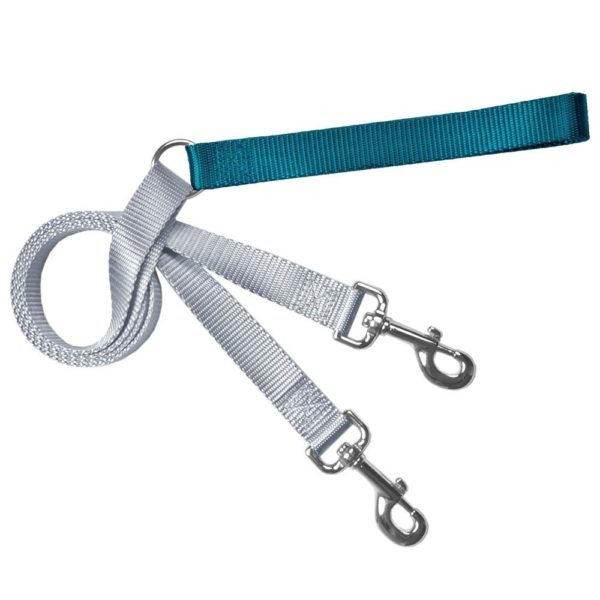 Training Leash Silver and Teal
