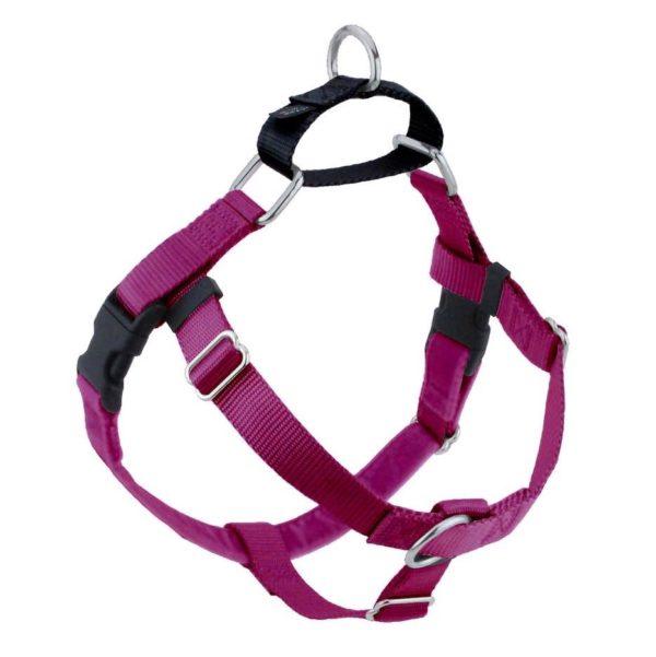 Raspberry Freedom No-Pull Dog Harness