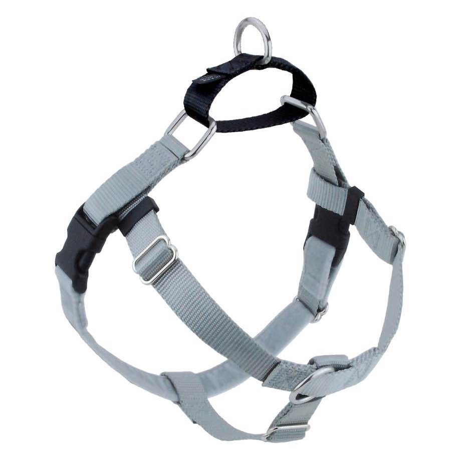 Silver Freedom No-Pull Dog Harness