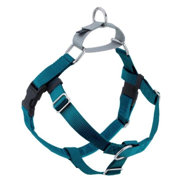 Teal Freedom No-Pull Dog Harness