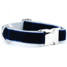 Navy/Silver Holiday Velvet Essential Dog Collar