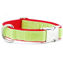 Lime Green/Red Holiday Velvet Essential Dog Collar