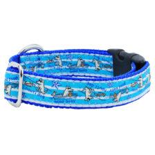 """1"""" Nauti Dog/Good Buoy Teddy The Dog Essential Collar"""