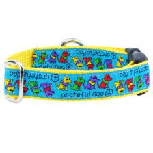 """1"""" Grateful Dog Teddy The Dog Essential Collar"""