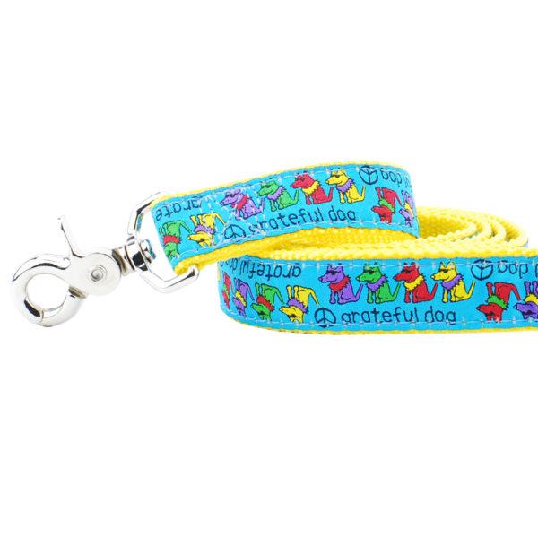 """1"""" Grateful Dog Teddy The Dog 5ft Essential Leash"""