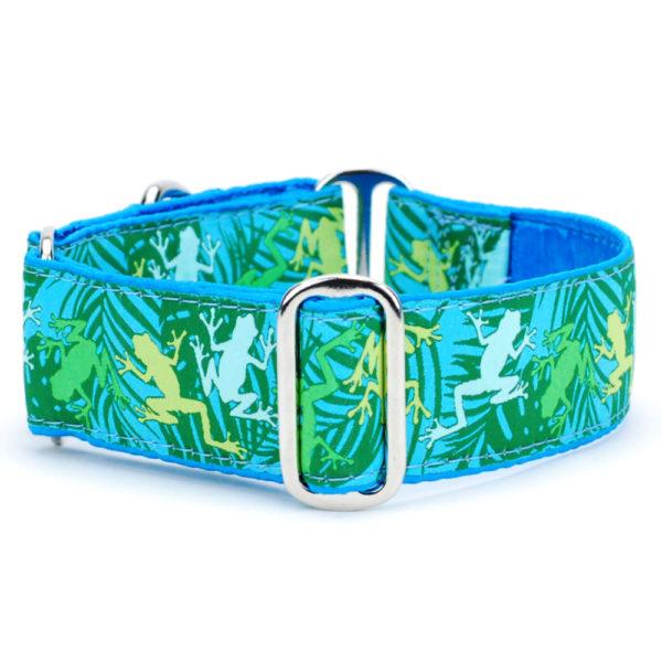 "1.5"" Coqui Surf Dog Collar - Exclusive Dog Collar"