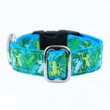 "1"" Coqui Surf Essential Dog Collar"