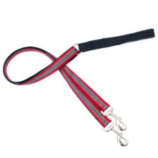 red and grey reflective training leash