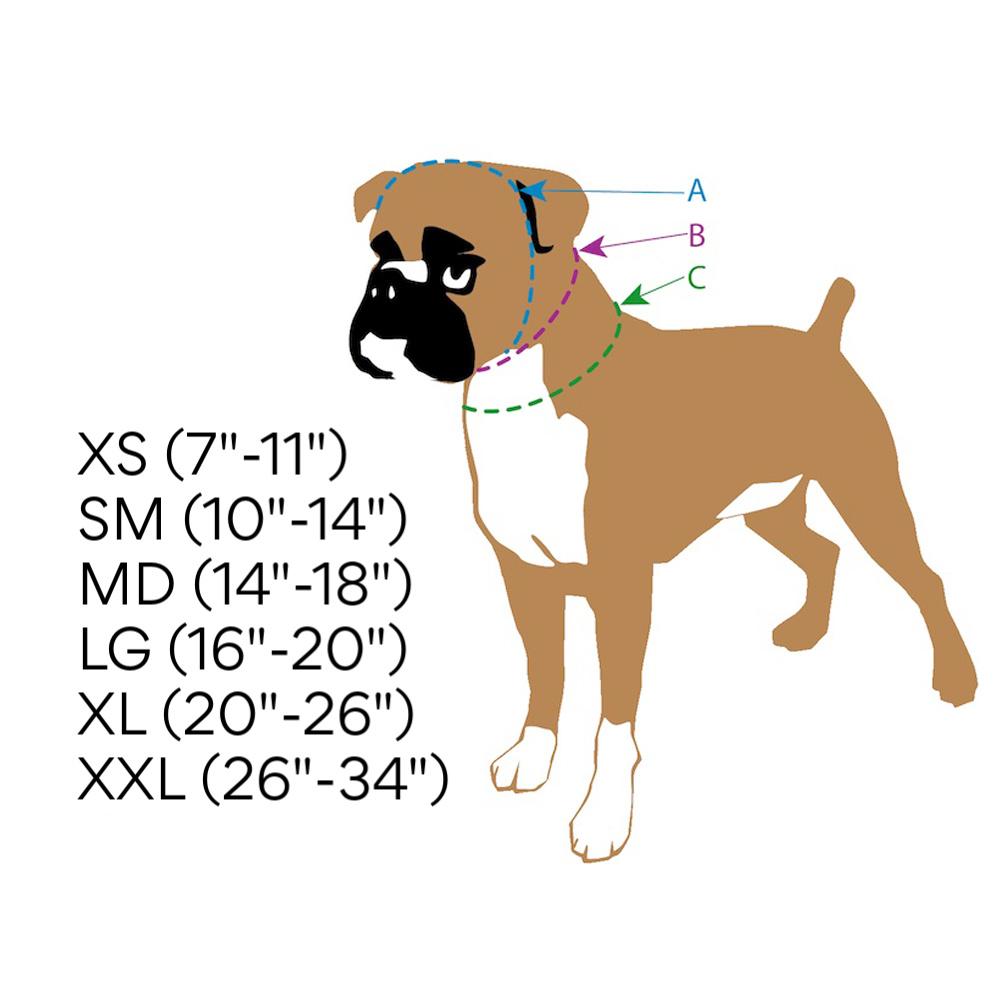 Dog collar sizing