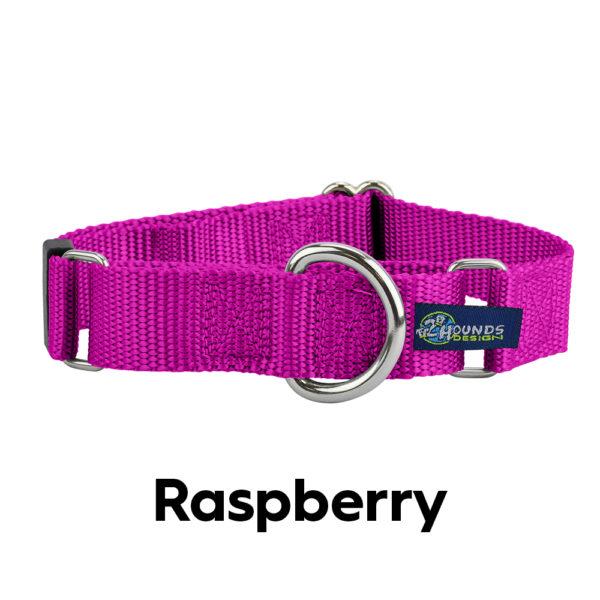 Raspberry Nylon Martingale Collar
