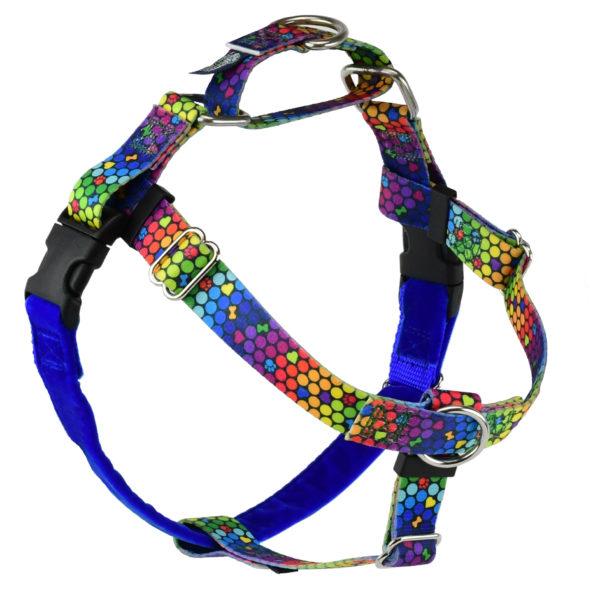 Rainbow Polka Dot Dog Harness