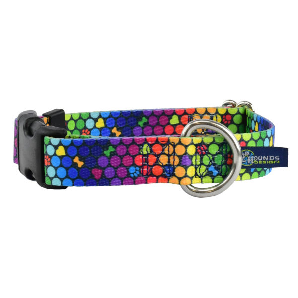 Rainbow Dog Collar from 2 Hounds Design