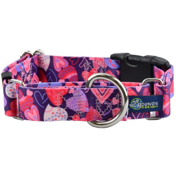 Wild Hearts Buckle Martingale Dog Collar